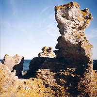 Rauker (Limestone rocks) at Holmhaeller near the southern tip of Gotland. Photo: Klaus himself.